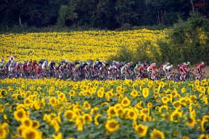 Тур де Франс 2014 - Этап 19
